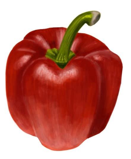 Vegetable Drawings